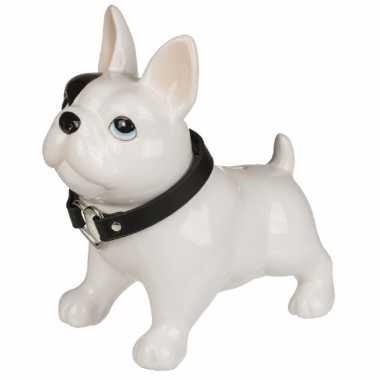 Spaarpot pitbull hond 21 x 19 cm