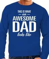 Awesome dad cadeau sweater blauw heren vaderdag cadeau
