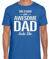 Awesome dad cadeau t shirt blauw heren vaderdag cadeau
