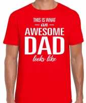 Awesome dad cadeau t shirt rood heren vaderdag cadeau